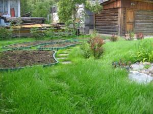 ландшафт огорода фото