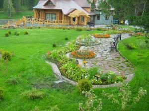 газон и цветники фото